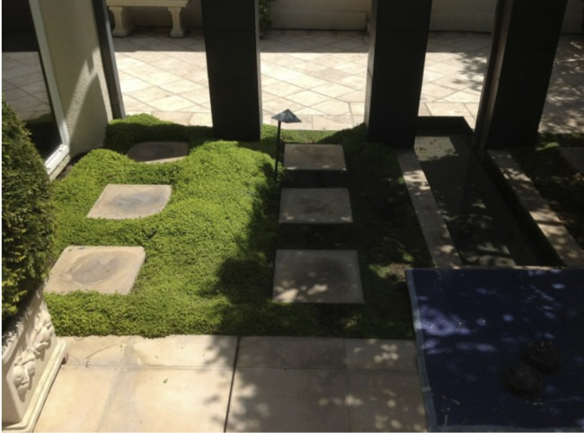Newport Beach courtyard gets a makeover using NoMow Turf synthetic grass!